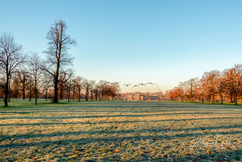 Kensigton Park London England Londra